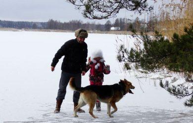 honden houden in de winter